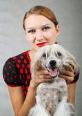 Kız ve çin tepeli köpek — Stok fotoğraf