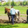 plowing the field — Stock Photo