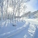 Winter landscape — Stock Photo #5429037