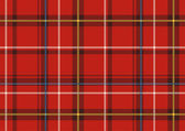 The Scottish plaid — Stock Vector