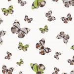 Funky butterflies — Stock Vector #5877857