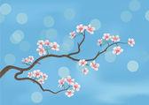 Flowered sakura — Stock Vector