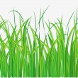 Stock Vector: Grassy field