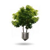 Lampadina con un albero — Foto Stock