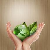 Grüne erde mit wachsender pflanzen — Stockfoto