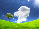 Natureza paisagem com nuvens — Fotografia Stock