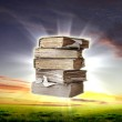 Book and nature — Stock Photo