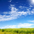 Nature landscape with clouds — Stock Photo