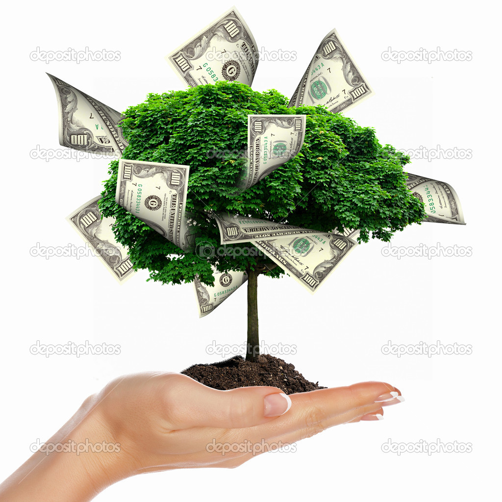 Money Tree with cuts on his hand of man. a symbol of financial success. — Stock Photo #5693247