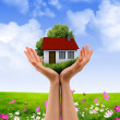 Hands holding house - Foto Stock