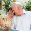 Senior couple drinking champagne — Stock Photo