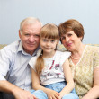 Grandparents and granddaughter - Stock Photo