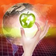 Hands holding apple representing earth — ストック写真