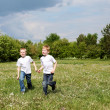 Stock Photo: Two brothers outdoors