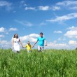 Family with son on the meadow — Stock Photo #5848830