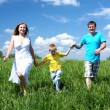 Family with son on the meadow — Stock Photo #5849005