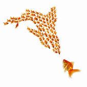 Pesce d'oro insieme — Foto Stock
