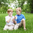 Portrait of two boys in the summer outdoors - Zdjęcie stockowe