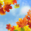 Red and yellow leaves - Stock Photo
