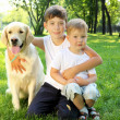 Stock Photo: Little boy in the park with a dog