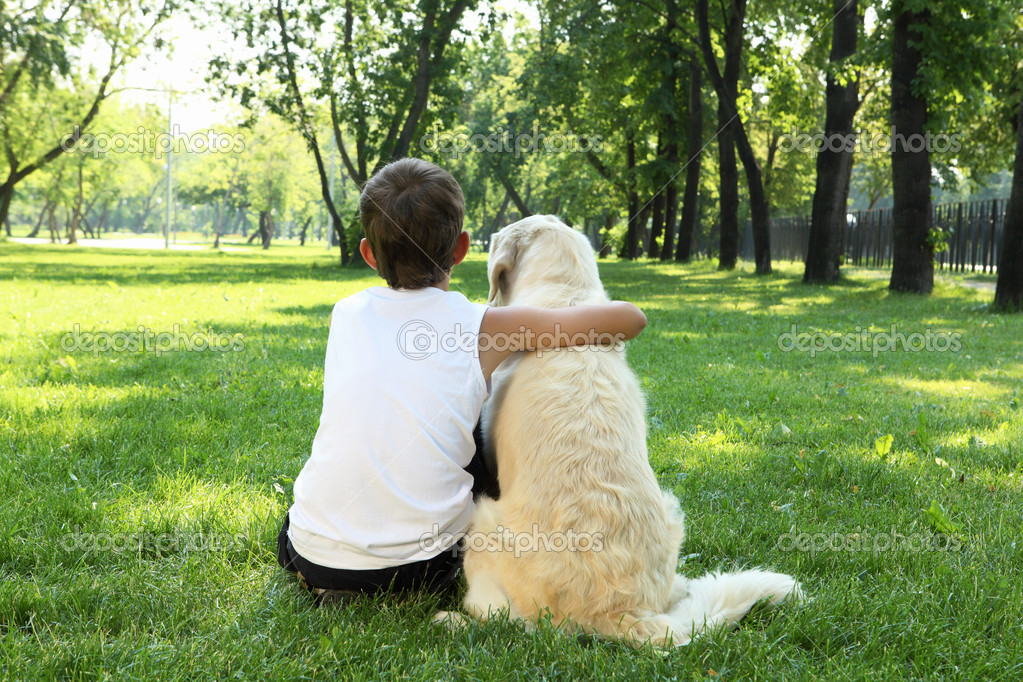 Teenager boy in the park with a golden retriever dog  Stock Photo #6194197