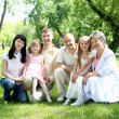 Extended family together in the park - Stock Photo