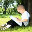 Portrait of a boy with a book in the park - Stock Photo