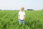 Portrait of in the summer outdoors — Stock Photo