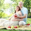 Young couple on picnic in the park — Stock fotografie #6345539