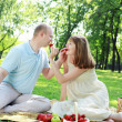 Young couple on picnic in the park — Stock Photo #6345691