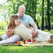 Young couple on picnic in the park — Stock fotografie #6345850