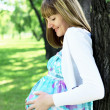 Portrait of young pregnant woman - Stock Photo
