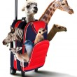 Red suitcase with different exotic animals inside — ストック写真