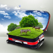 Red suitcase with green nature inside — Stock Photo #6553034