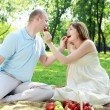 Young couple on picnic in the park — Stock Photo #6553208