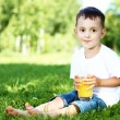 Portrait of a little boy in the park — Stock Photo #6644005