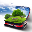 Red suitcase with green nature inside — Stock Photo #6644077