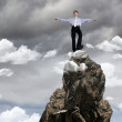 Businessman on the top of a high mountain — Stock Photo #6692900