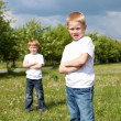 Two brothers outdoors — Stock Photo #6706645