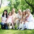Stock Photo: Extended family together in park