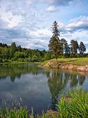 Bir göl manzara — Stok fotoğraf