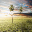 Idyllic landscape — Stock Photo