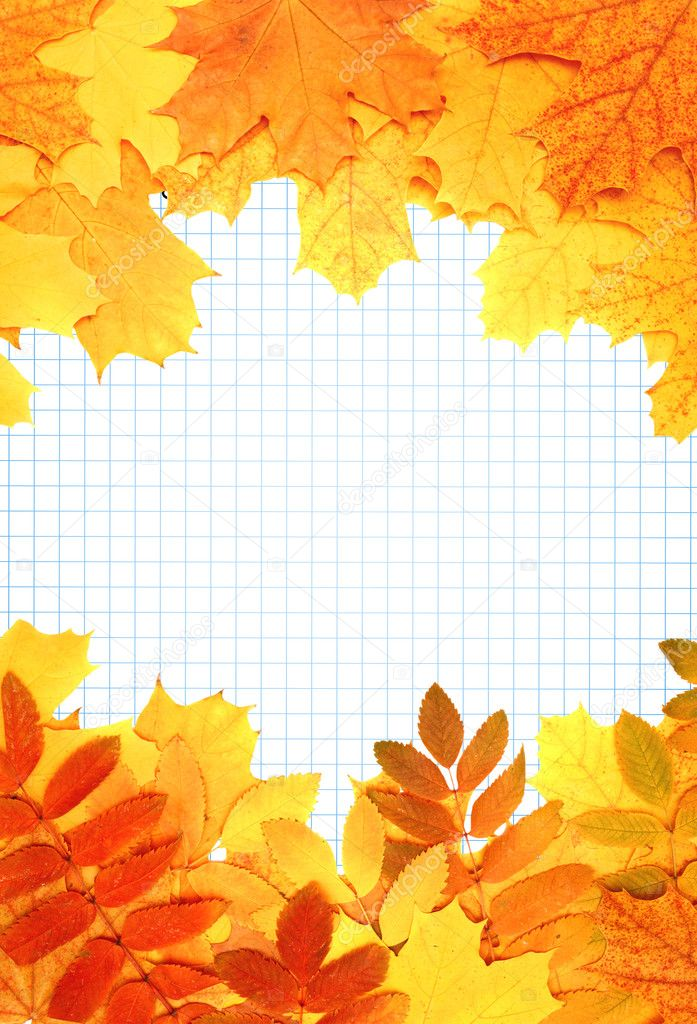 Notebook pages autumn leaves. Vertical background  Stock Photo #6185009