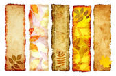 Collection of autumn banners — Stockfoto