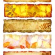 Collection of autumn banners — Stock Photo
