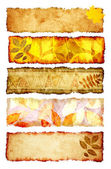 Collection of autumn banners — Zdjęcie stockowe