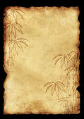 Sheet old paper with image of bamboo — Stock Photo