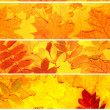 Royalty-Free Stock Photo: Set of banners with autumn leaves