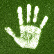 Stock Photo: Grass hand print