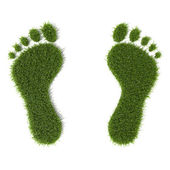 Grass footprint — Stock Photo